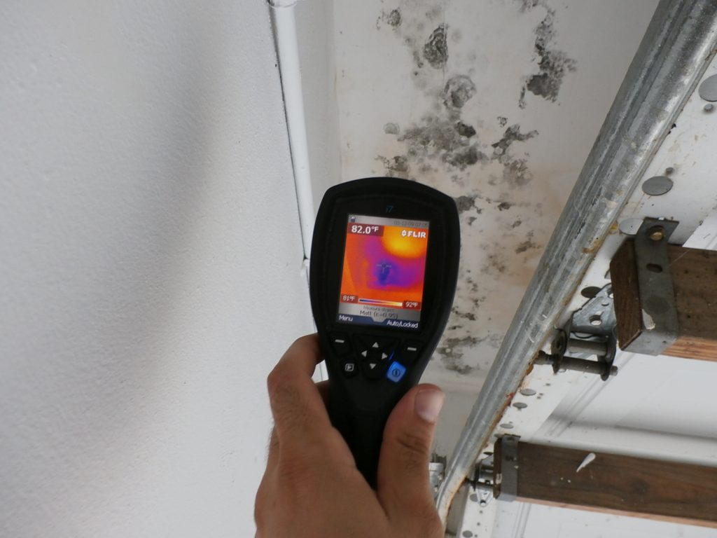 Mold Remediation Removal Amp Testing Lancaster