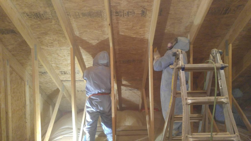 Attic Mold Remediation in Pennsylvania