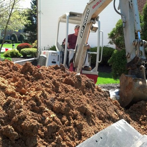 digging up mold in backyard